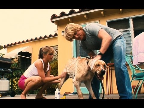 Marley & Me (2008) - 'Two Year Montage' Scene [1080]