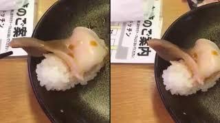 """Đoạn clip hot nhất MXH những ngày qua: Món sushi bỗng dưng """"sống dậy tìm cách tẩu thoát"""""""