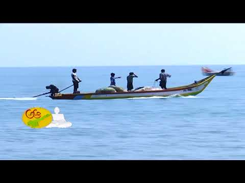 AP Tourism  Beauty of Prakasam | Kothapatnam Beach | Day 2