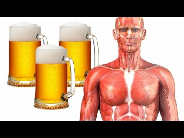 See What Happens To Your Body When You Drink A Pint Of Beer Everyday