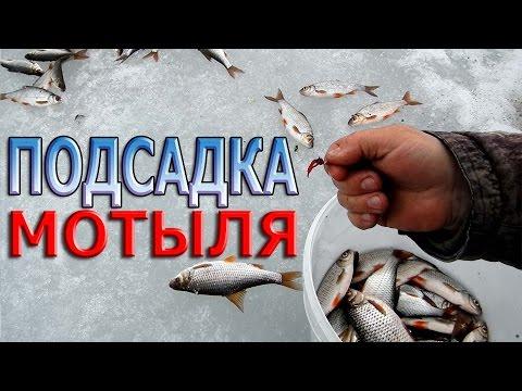 вымя наживка для рыбы