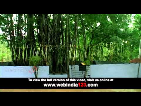 Pulluvanpattu video