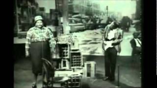 Big Mama Thornton Live You Ain 39 T Nothing But A Hound Dog