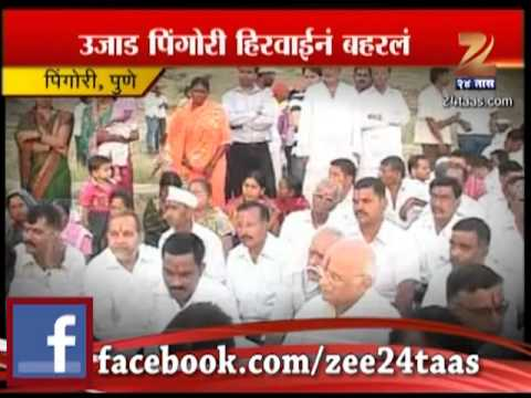 Zee24taas: Water Project By Dagdusheth Ganpati Trust In Pingori, Pune video