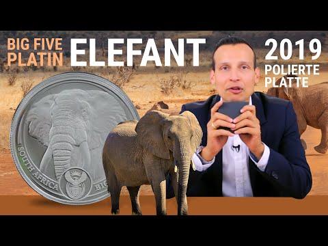 1 Unze Platin - Big Five Elefant 2019 PP - 500 Stück