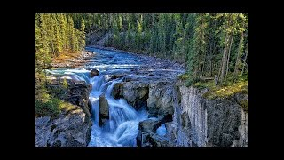 Relaxing Music with Singing Birds and Waterfall Sounds Spa, Yoga, Meditation, Study, Zen 2