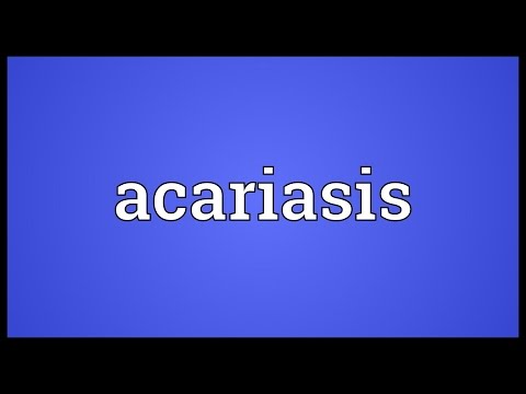 Header of acariasis