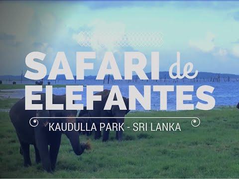 Safari de Elefantes no Sri Lanka - Kaudulla National Park