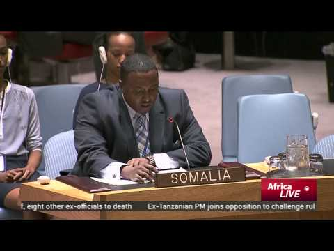 UN urges member states to support the forces fighting Boko Haram