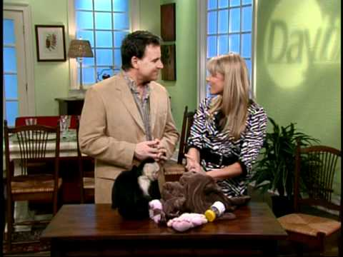 Kelly Diedring Harris on Daytime with a monkey!