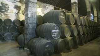 Sherry Wine of Andalucía