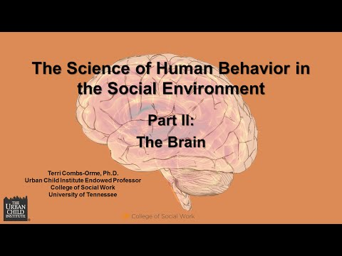 The Science of Human Behavior in the Social Environment: The Brain