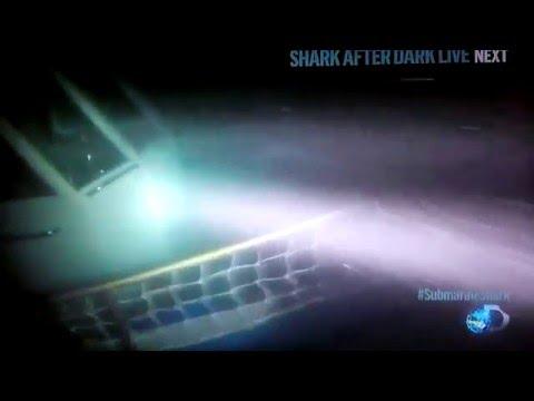 Submarine Shark attack caught on Video