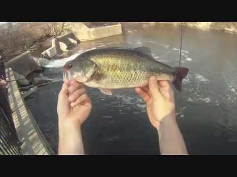 The GEO Report: March 20, 2012 Chicago River Seven Bass Day Fishing in Late Afternoon Crowds