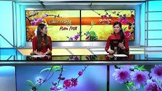 Tin Việt Nam | 01/02/2019 | TIN TỨC SBTN