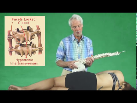 Joint Mobilization &amp  Deep Tissue Massage For Low Back Pain  Tips For Bodyworkers