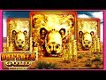 ★ LIVE PLAY ★ Buffalo Gold Slot Machine Bonus Wins | Slot Traveler