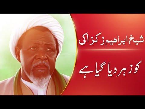 Sheikh Zakzaky ko Zaher Diya Gya Hai || Ustad e Mohtaram Syed Jawad Naqvi