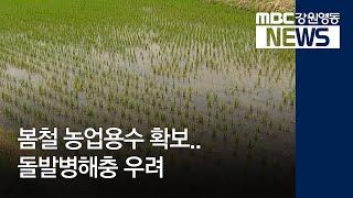 R)봄철 농업용수 확보..돌발병해충 우려