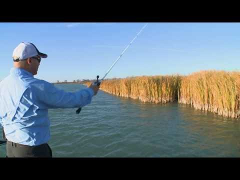 Wacky Rigging Fall Bass - Bob Izumi Real Fishing Show