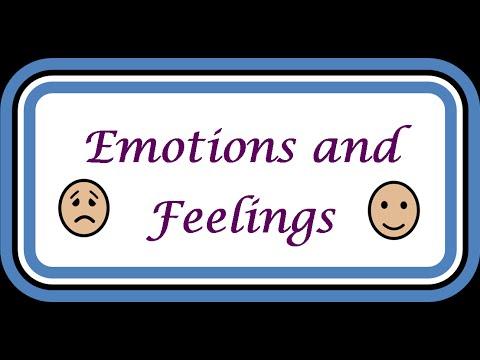 Feel the Way You Feel