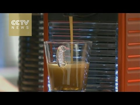 China shifting from tea to coffee?
