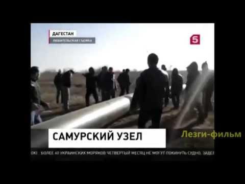 Самурский узел Samur forest ecology