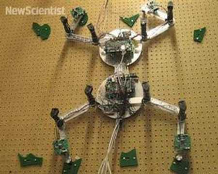 Climbing robot throws its weight around