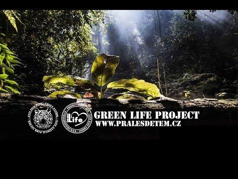 GREEN PATROL
