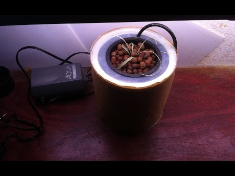 Very Small Hydroponic System, Home Made, For $10