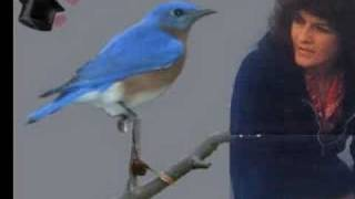 Watch Donna Fargo Hello Little Bluebird video