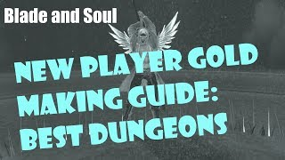 [Blade and Soul] New Player Gold Making Guide: Best Dungeons!