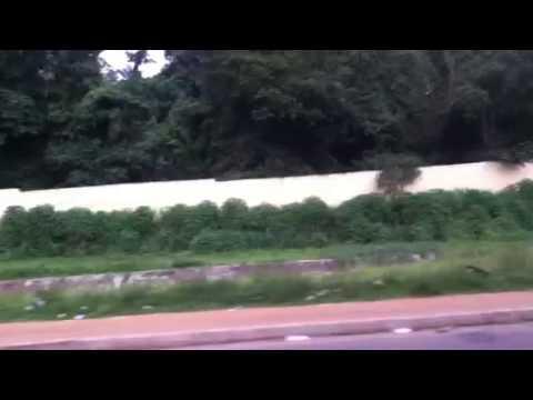 Abidjan Abobo le zoo