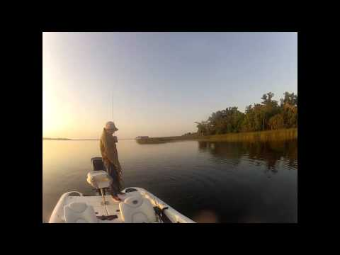 Spinnerbait Fishing for Bass - St Johns River Florida