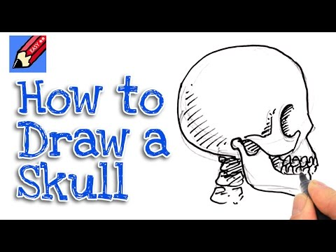 How to Draw a Skull from the side Real Easy - YouTube