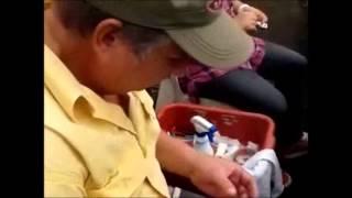 VIVERO DE AGUACATES  QUIERO APRENDER A INJERTAR ARBOLES DE AGUACATE