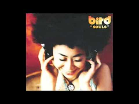 Cover image of song Souls by Bird