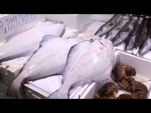 live from billingsgate fish market in london