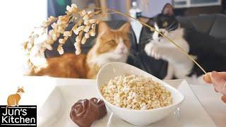 Popcorn Rice by : JunsKitchen