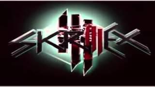 Skrilex - Rock n Roll (remix) Ft. Pepe