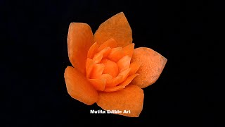 Carrot | Lotus Flower | Intermediate Lesson 52 | Mutita Edible Art Of Fruit And Fegetable Carving Vi
