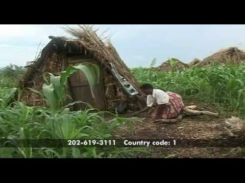 VOA's Paul Sisco on Land Reform in South Africa & Zimbabwe  - Straight Talk Africa