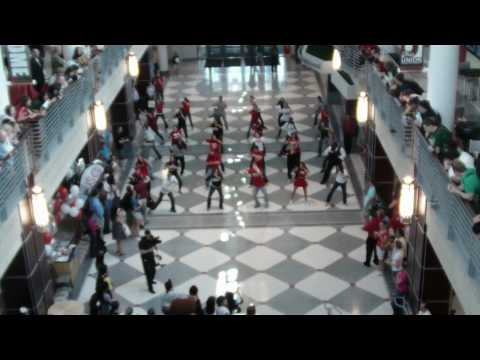 Flash Mob Dance at Ohio State's Union May 3, 2010
