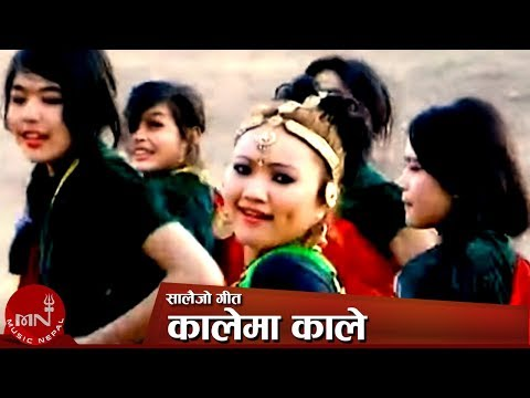 Salaijo (kalema Kale) By Lali Budhathoki And Thaneshwor Gautam video