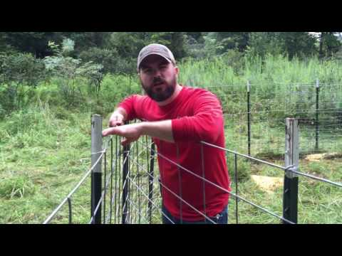 How to build a hog trap - Figure C feral hogs trap