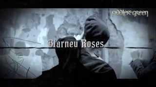 FIDDLER'S GREEN - 25 BLARNEY ROSES - Trailer 2015