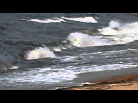 баргузинская рыбалка видео
