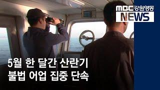 R)산란기 불법 어업 집중 단속