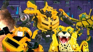 Bumblebee VS Bumblebee VS Cheetor! Transformers Stop Motion | Feat. JobbytheHong | Toy Animation |