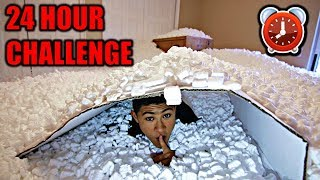 OVERNIGHT IN 1,000,000 PACKING PEANUTS | 24 Hour Challenge